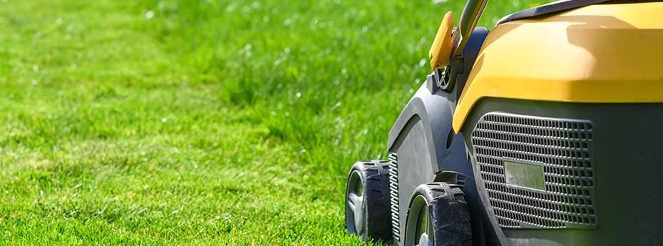 Vitalis service d'entretien du jardin : tonte de la pelouse