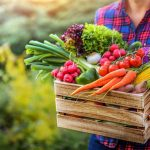 Sélection de légumes pour l'été